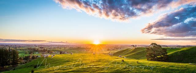 Rolling hills Waikato sunset