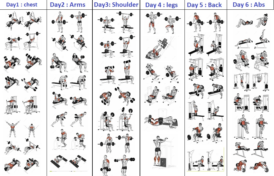 Top 5 Day Workout Routine For Man All Bodybuilding Com