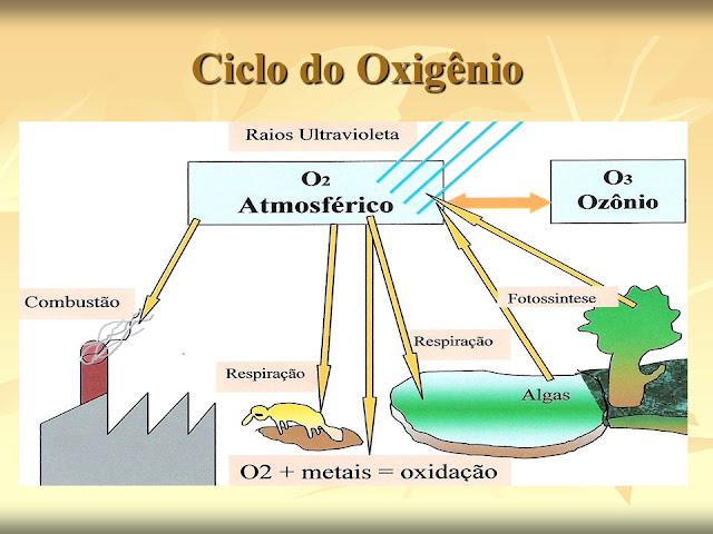 Oxigênio, Propriedades Físicas e Químicas do Oxigênio