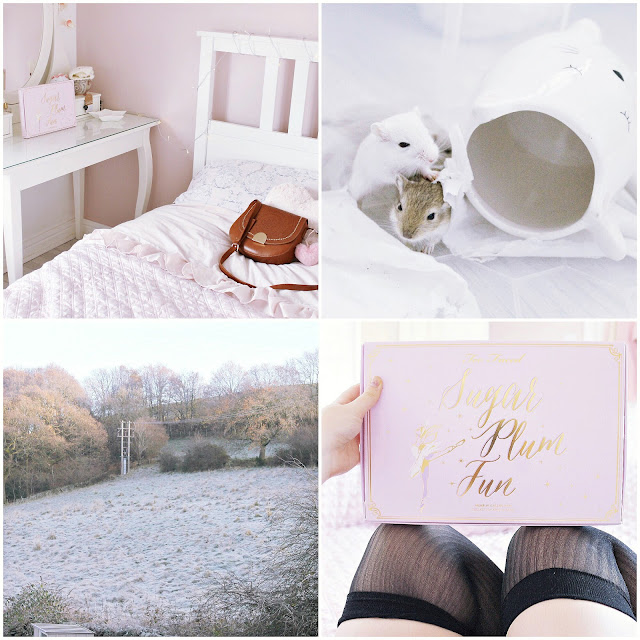 December pink photo diary