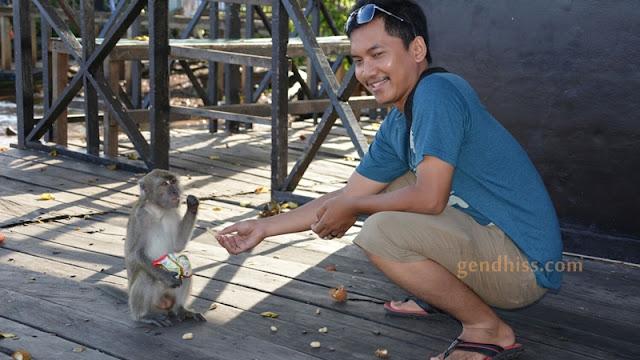 Bonus foto suami yang sudah akrab sama monyet ini, haha