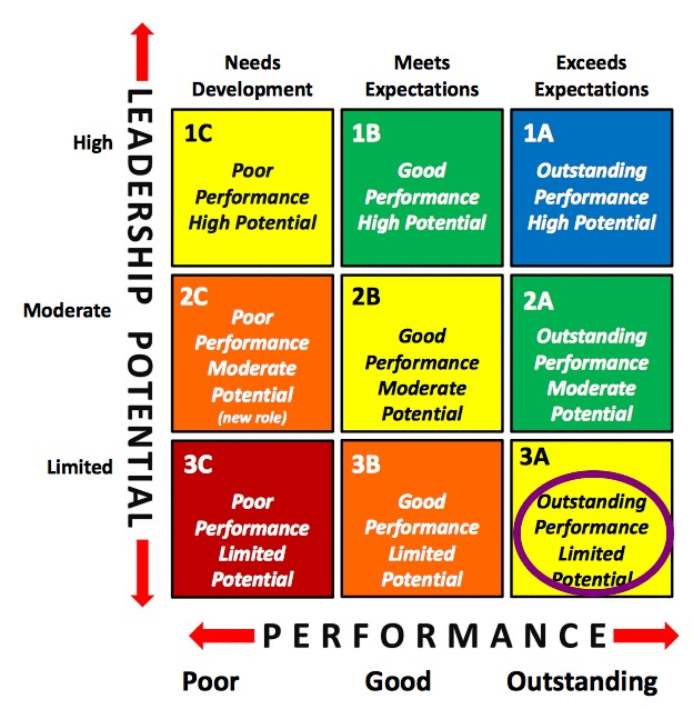 Talent Management 9 Box Grid Outstanding Performance Limited Potential