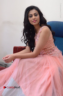 Actress Neha Hinge Stills in Pink Long Dress at Srivalli Teaser Launch  0101.JPG