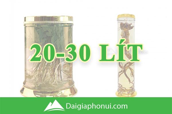 Bình Ngâm Rượu Hàn Quốc (Yongcheon Glass) 20-30 Lít - Dai Gia Pho Nui