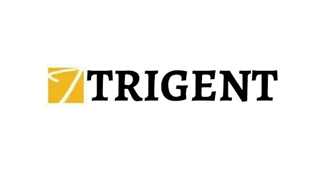 Trigent Software Careers 2016