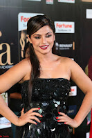 Glamorous Actress Neetu Chandra in Black dress at IIFA Utsavam Awards 2017  HD Exclusive Pics 24.JPG
