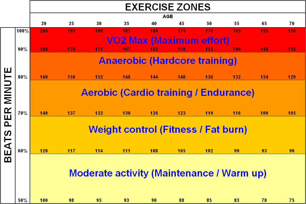 Lose Body Fat Workout Routines Exercise Heart Rate Zone