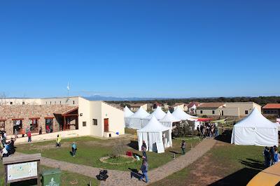 Festival de Grullas en Extremadura
