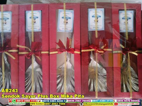 jual Sendok Sayur Plus Box Mika Pita