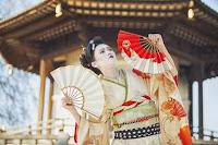 Japonia-Țara Soarelui Răsare