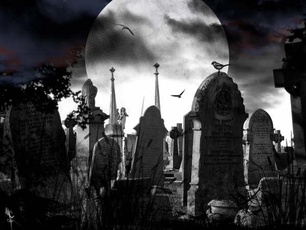 Una noche en el cementerio / 01
