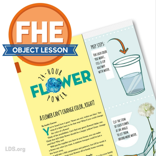 15 FHE New Era Object Lessons - Linda Winegar
