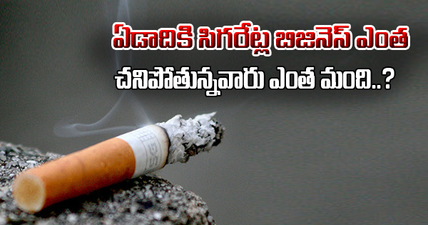 Shocking Stats Of Cigarette Business And Deaths