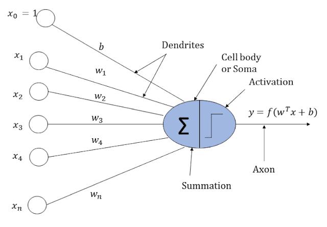 Artificial Neuron | APDaga | DumpBox