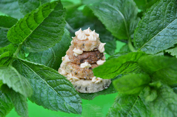 Mint en rooibos koekjes & Pluktea Boskoop