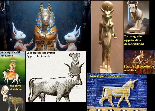 Resultado de imagen de diosa vaca hinduismo