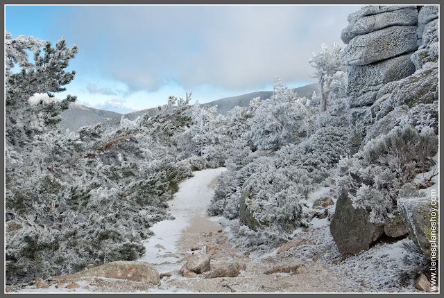 Ruta Puerto de Navacerrada - Pico Somontano