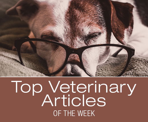 Top Veterinary Articles of the Week: Monoclonal Antibody Therapy, Dilated Cardiomyopathy, and more ...