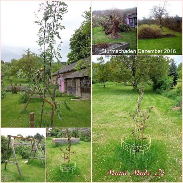 Mein Garten im Mai - May Garden
