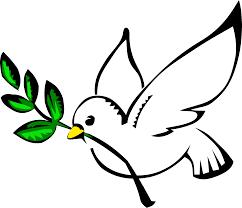Estabeleçamos a Paz