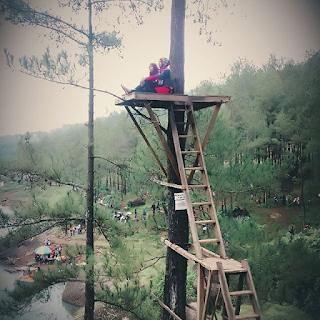 rumah pohon di Ranu Gumbolo