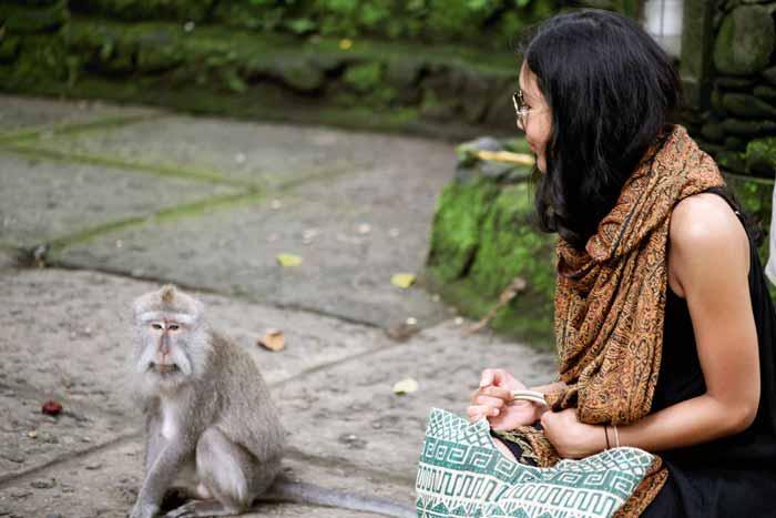 Harga Tiket Masuk Wisata Monkey Forest Ubud Bali