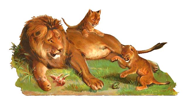 http://2.bp.blogspot.com/-j7_B312ERQE/UovMVcwJgsI/AAAAAAAAR9M/T1FSDWejKuU/s1600/lion_cubs_playingpng.png