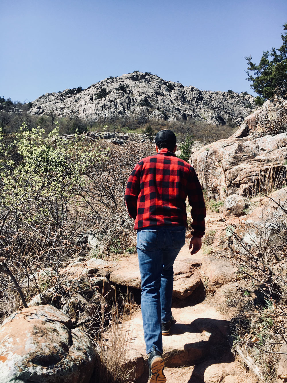 climbing elk mountain