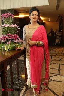 Actress Anandhi Enakku Innoru Per Irukku Press Meet 0028