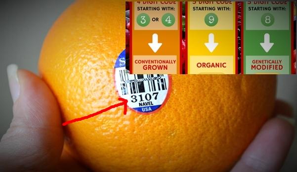 Memahami Arti di Balik Stiker Kode Buah-buahan