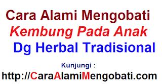 Cara alami mengobati kembung pada anak dg herbal tradisional