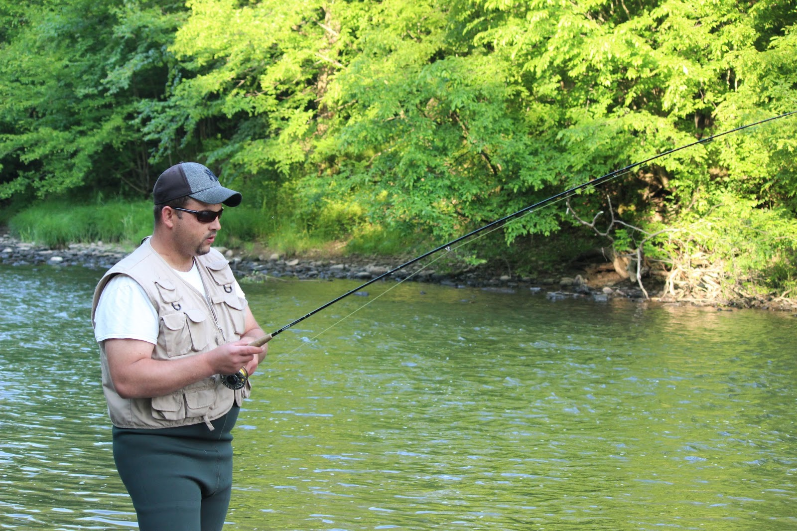 Wny fly fishing wny fly fishing stream report trout for Trout fishing ny