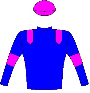 CAPTAIN AMERICA - Horse - South Africa - Royal blue, pink epaulettes, armbands and cap