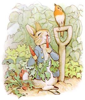 قصص وحكايات قصيرة للاطفال الأرنب بيتر والسيد ماغوير