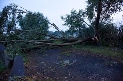 Hargita megye, Székelyudvarhely, extrém időjárás, szélvihar, ISU Harghita