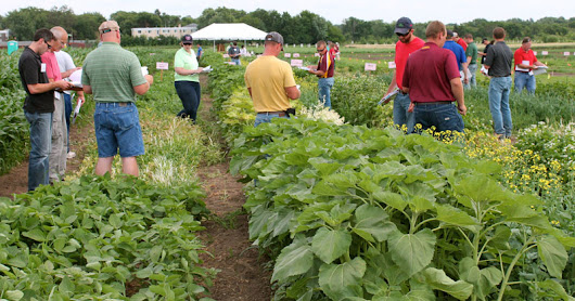 Register today for the July 2018 Field School for Ag Professionals
