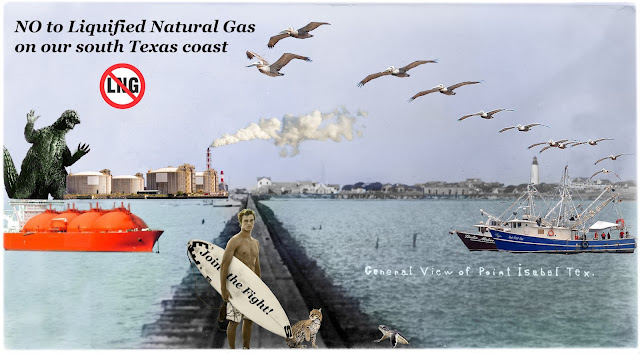 Image result for save rgv from lng