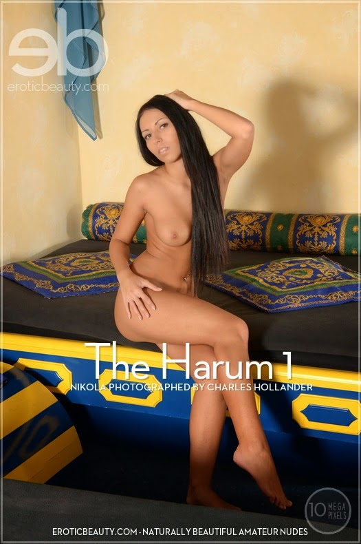 EroticBeauty 2014-12-21 Nikola - The Harum 1 08280