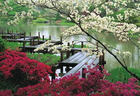 The Missouri Botanical Garden, St. Louis