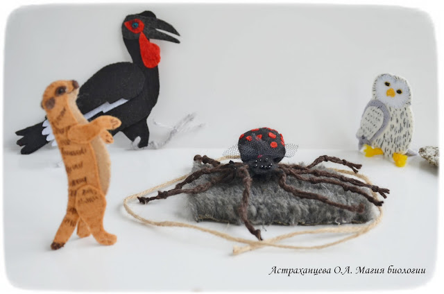 palchikovye-igrushki-pauk-karakurt-surikat-kafrskij-voron-ovechja-shkura
