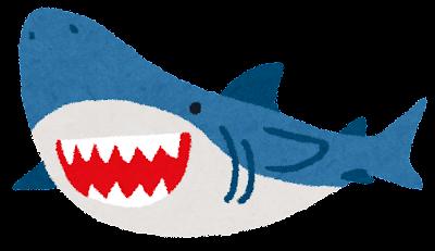 サメのイラスト(魚)