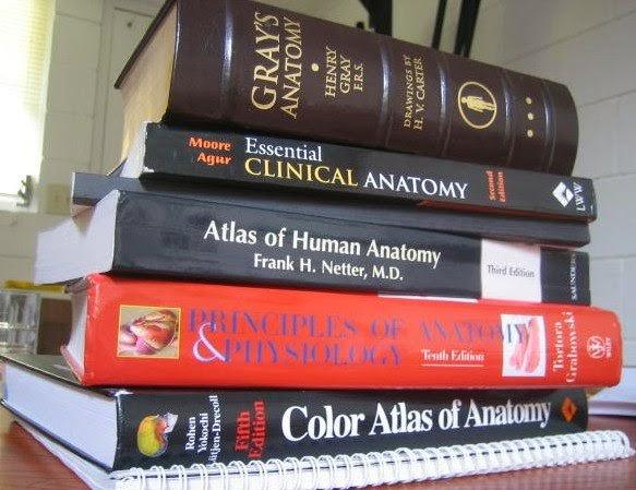 Qual melhor livro de anatomia humana