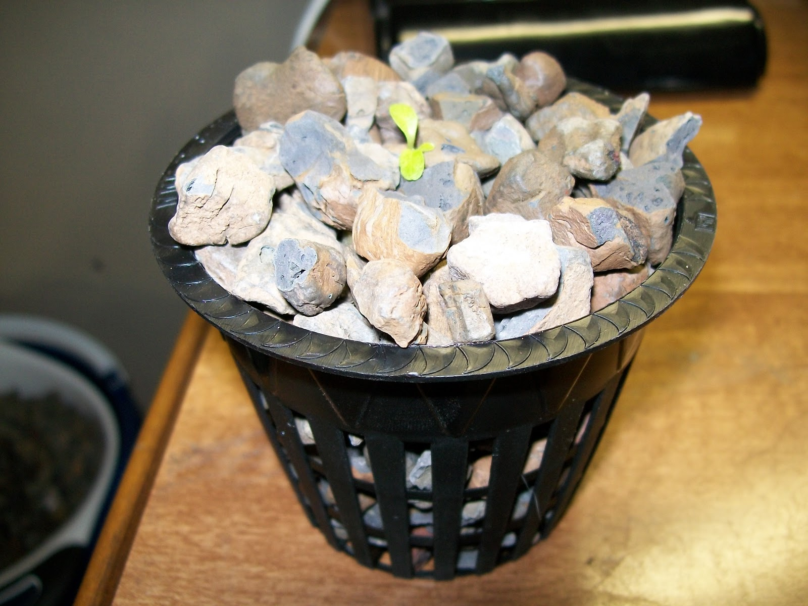 Frugal Hydroponics Why Do I Use Silica Stone