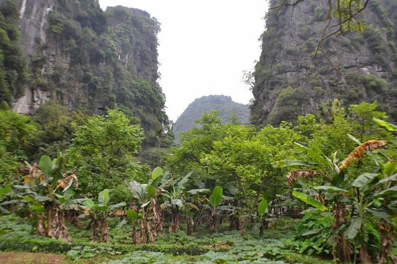 Tam Coc, Baie d'along terrestre, Vietnam, temple de jade