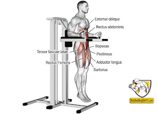 The Captain's chair or hanging leg raise station is a workout frame used in many gyms