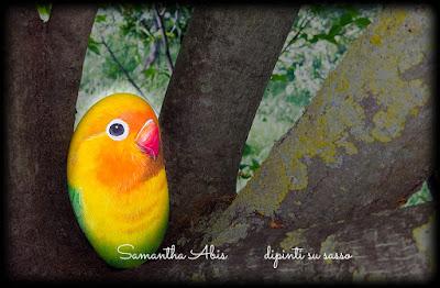 Sassi dipinti a mano pappagallo