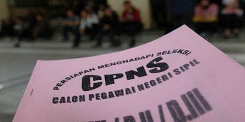 Resmi Seleksi CPNS 2017 Dibuka Pada Bulan Juni