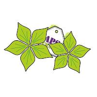 http://apscraft.pl/pl/kwiatki/252-krojnik-kwiat5d.html