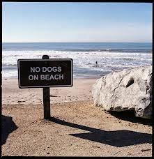 placa proibido cães na praia