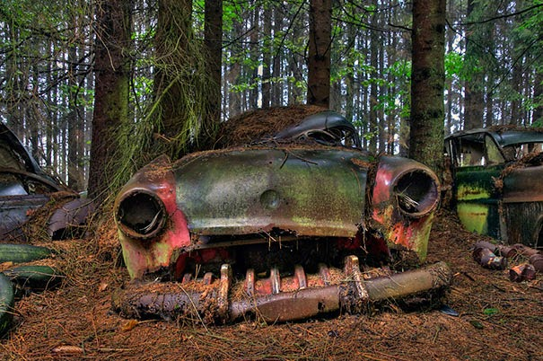 This Traffic Jam Was Stuck In Belgian Forest For 70 Years